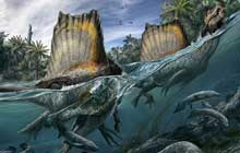 Spinosaurus aegyptiacus had feet well suited to paddling and a sail-like structure