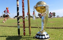 Cricket World Cup has given a huge boost to certain segments of the Indian economy